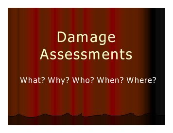 Disaster Damage Assessments