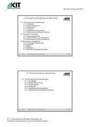 4. Energetische Nutzung von Biomasse  - IKFT - KIT