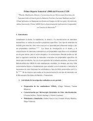 Primer Reporte Semestral (2008) del Proyecto CUDI