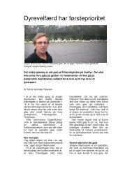 Læs artiklen i PDF her