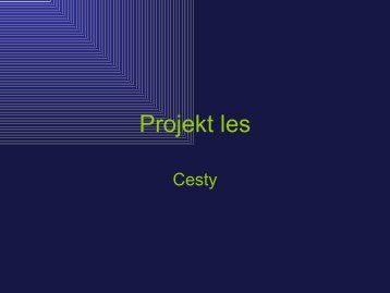 Projekt: Cesty (autor Daniel Bezděk)