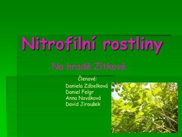 Nitrofilní rostliny