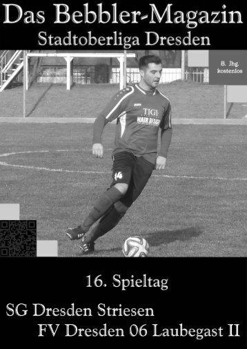 Das Bebbler-Magazin - 16. Spieltag - 2014/2015