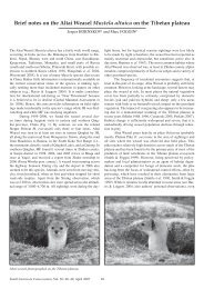 Brief notes on the Altai Weasel Mustela altaica on the Tibetan plateau