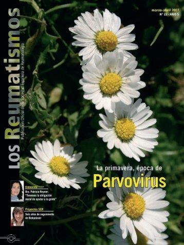 Entrevista Dra. Patricia Reyner - Sociedad Española de Reumatología