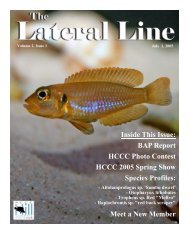 Lateral Line July 2005-converted.pub - Hill Country Cichlid Club