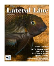 Lateral Line December 2006.pub - Hill Country Cichlid Club