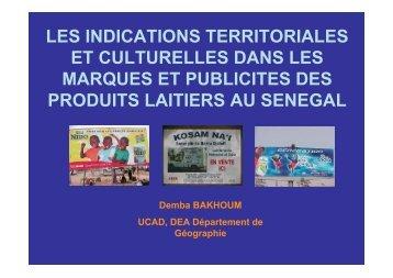 LES INDICATIONS TERRITORIALES ET CULTURELLES ... - REPOL