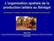 L'organisation spaciale de la production laitière au Sénégal - REPOL
