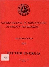 Tomo II - Consejo Nacional para Investigaciones Científicas y ...