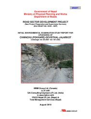 Initial Environmental Examination Report - About Department of Road