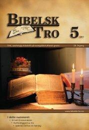 bibelsk tro 5 - Lyd i Natten