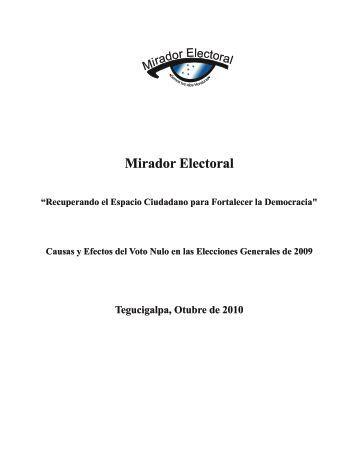 Informe Votos Nulos - Tribunal Supremo Electoral