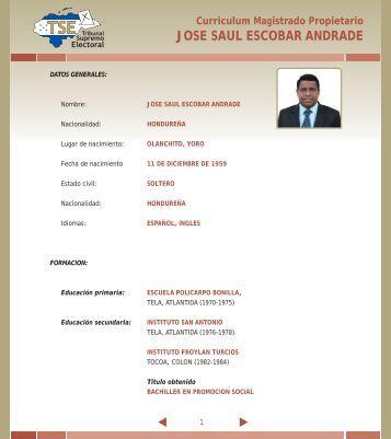JOSE SAUL ESCOBAR ANDRADE - Tribunal Supremo Electoral