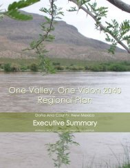Vision 2040 Executive Summary - New Mexico State University