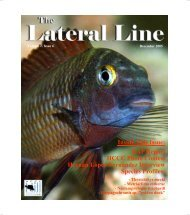 Lateral Line December 2005.pub - Hill Country Cichlid Club