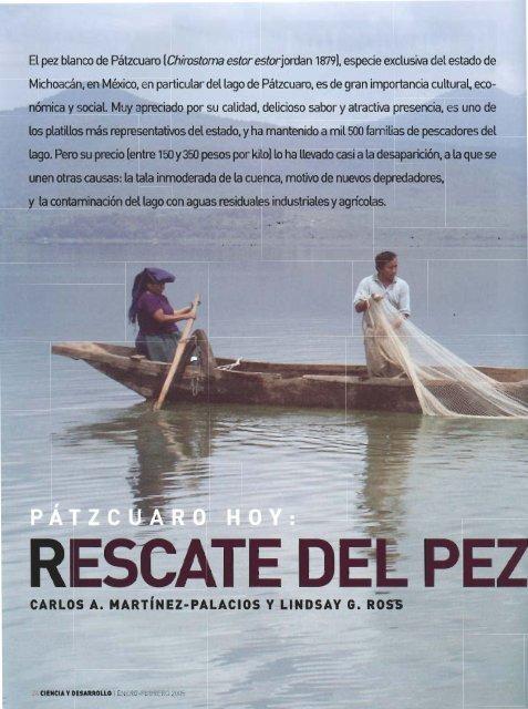 El pez blanco de Pátzcuaro - Institute of Aquaculture