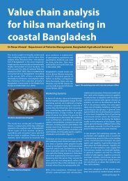 Value chain analysis for hilsa, Bangladesh - Institute of Aquaculture