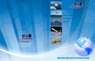 Corporate Brochure - BFA Systems, Inc.
