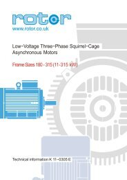 180 to 315 frame motors - Rotor UK