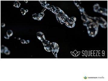 Sorenson media squeeze server 4. 0 (standard, download) 4000-sop.