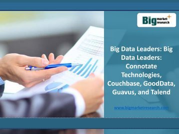 Strategies and Plans of Big Data Leaders: Connotate Technologies