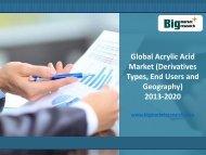 Global Acrylic Acid Market Insights, Demand (Derivatives Types) 2013-2020