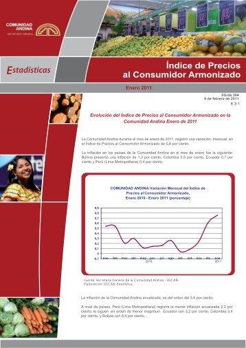 enero 2011 - Intranet - Comunidad Andina