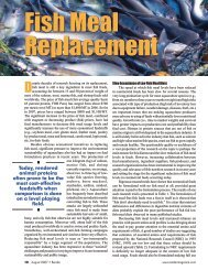 Fish Meal Replacement - Harmony