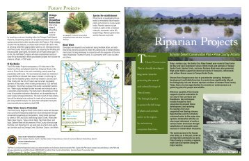Riparian Projects brochure - Pima County Flood Control District
