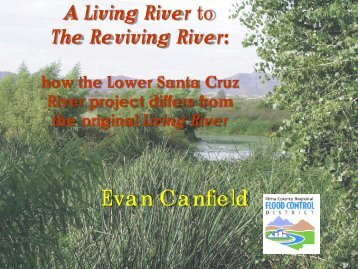 A Living River to The Reviving River - Pima County Flood Control ...