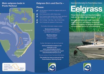 Eelgrass Leaflet - Poole Harbour Aquatic Management Plan