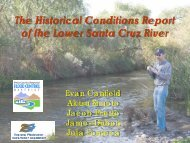 Historical Condition Report of the Lower Santa Cruz River