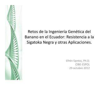 Retos de la Ingenieria Genetica del Banano en El Ecuador...Efren Santos.CHARLA