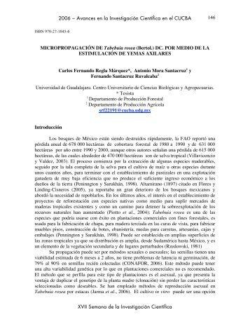 Regla Márquez Carlos Fernando - Centro Universitario de Ciencias ...