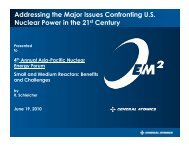 Addressing the Major Issues Confronting U.S. Nuclear Power in the ...