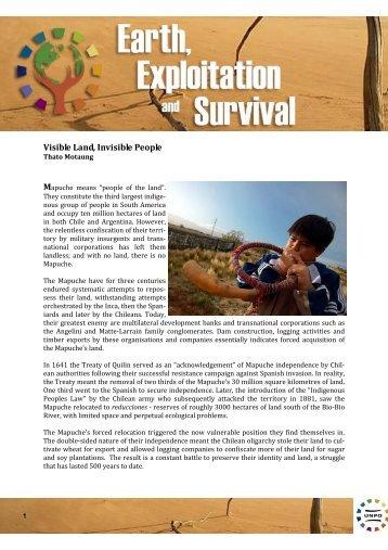 Mapuche article - UNPO