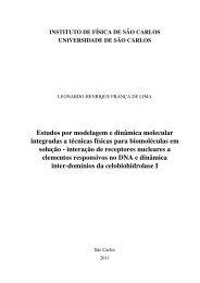Estudos por modelagem e dinˆamica molecular integradas a ...