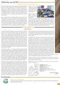 Informativo - PARóQUIA NOSSA SENHORA RAINHA - Page 3