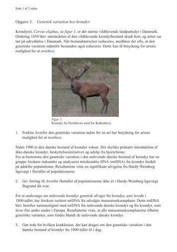 Opgave 3. Genetisk variation hos krondyr