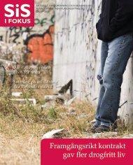 SiS i Fokus nr 4/08 (pdf 1,25 MB, nytt fönster) - Statens ...