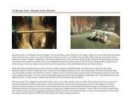 19. Skocjan Jame – Skocjian Caves, Slovenia - Med-ina.org
