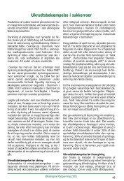 Ukrudtsbekæmpelse i sukkerroder - Økologisk Rådgivning