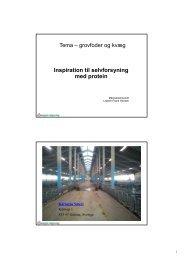 Tema – grovfoder og kvæg Inspirationtilselvforsyning medprotein