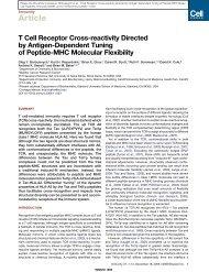 T Cell Receptor Cross-reactivity Directed by Antigen-Dependent ...