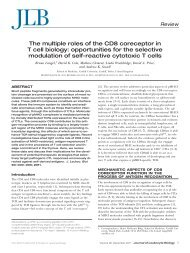 The multiple roles of the CD8 coreceptor in T cell biology ... - T-cells