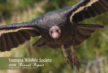 2012 Annual Report - Ventana Wildlife Society
