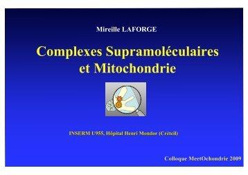Mireille Laforge - MeetOchondrie