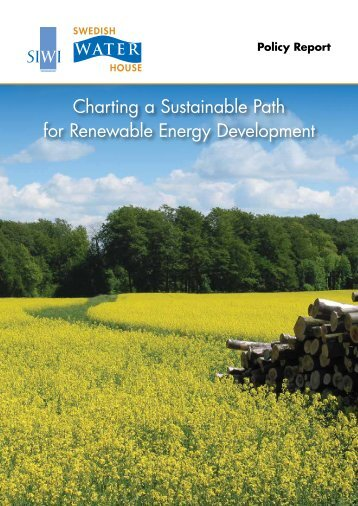 Charting a Sustainable Path for Renewable Energy Development