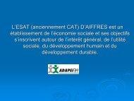L'ESAT (anciennement CAT) D'AIFFRES est un établissement de l ...